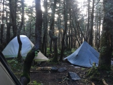 Our campsite just below Lafayette. It wasn't ideal–we were all up against trees and in puddles all night. But it worked.